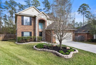 10 Otter Lodge Place The Woodlands TX 77382