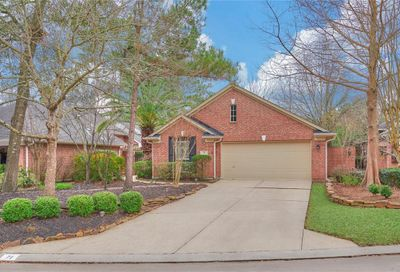 71 W Honey Grove Place The Woodlands TX 77382