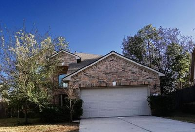 15 Crabtree Court The Woodlands TX 77382