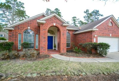 18 Silk Tree Place The Woodlands TX 77384