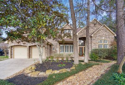 18 Ivory Moon Pl Place The Woodlands TX 77381