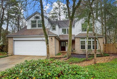 14 Leaf Trace Court The Woodlands TX 77381