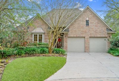 8 Gingerwilde Place The Woodlands TX 77381