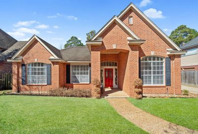 9 Swiftstream Place The Woodlands TX 77381