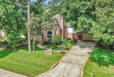 31 Watertree Court The Woodlands TX 77380