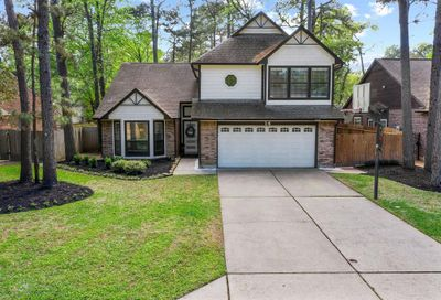 14 Dusky Meadow Place The Woodlands TX 77381