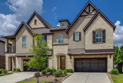 15 Daffodil Meadow Place The Woodlands TX 77375