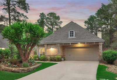 171 S Copperknoll Circle The Woodlands TX 77381