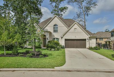 19 Tannery Hill Road The Woodlands TX 77375