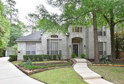 14 Long Lake Place The Woodlands TX 77381