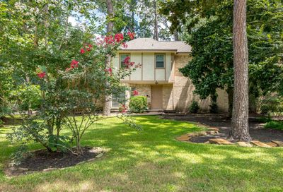 6 Willowherb Court The Woodlands TX 77380