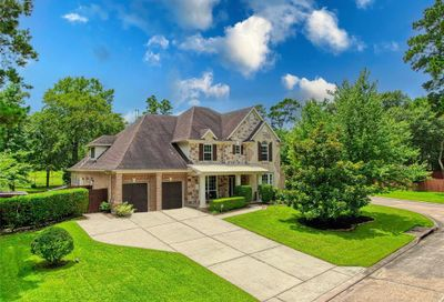 19 Forest Steppes Court The Woodlands TX 77382