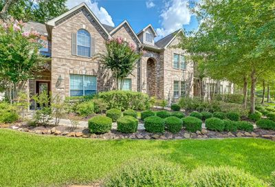 10 Pine Needle Place The Woodlands TX 77382