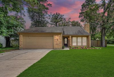 8 S Brook Pebble Court The Woodlands TX 77380