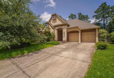 14 Blue Wildflower Place The Woodlands TX 77354
