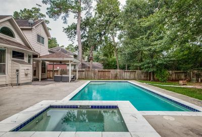 30 Valley Mead Place The Woodlands TX 77384