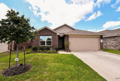 15434 Pueblito Verde Way Channelview TX 77530