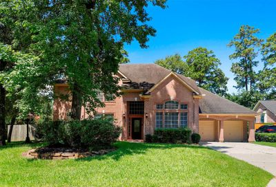3 Ivory Moon Place The Woodlands TX 77381