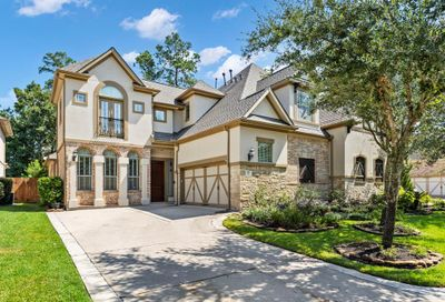 95 S Knights Crossing Drive The Woodlands TX 77382