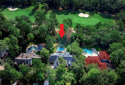 58 Firefall Court The Woodlands TX 77380
