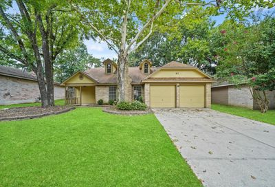 41 Country Forest Court Spring TX 77380