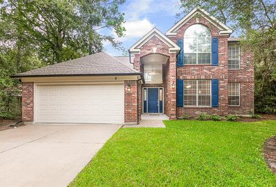 8 Greentwig Place Spring TX 77381