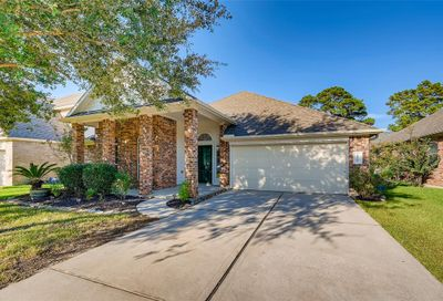 20306 Little Wing Drive Spring TX 77388
