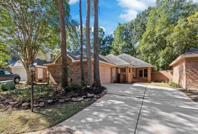 30 Cedar Chase Place The Woodlands TX 77381