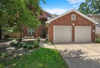 3 Delta Mill Court The Woodlands TX 77385