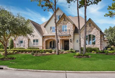 14 S Knightsgate Circle The Woodlands TX 77382