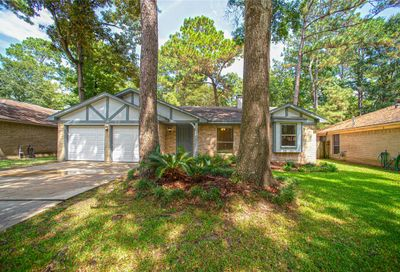 169 W Woodstock Circle Drive The Woodlands TX 77381