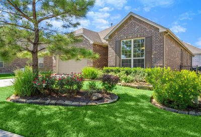 228 Palomino Court The Woodlands TX 77382