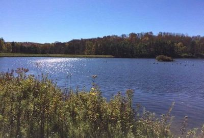 143 Lake Lorraine Ext Out Of Area Town NY 13815