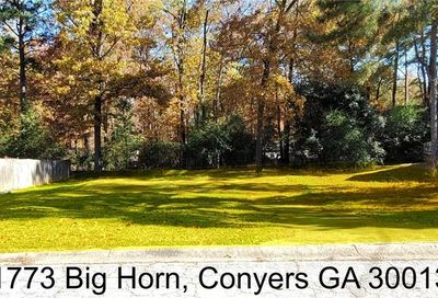 1773 Big Horn Court SE Conyers GA 30013