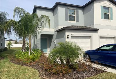 7646 Ginger Lily Court Tampa FL 33619