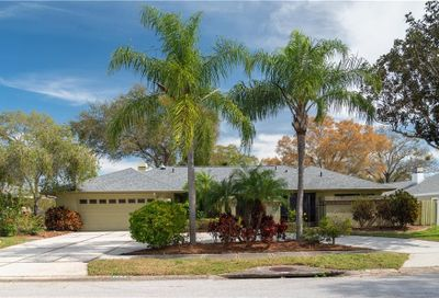 1563 Misty Plateau Trail Clearwater FL 33765