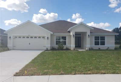 9810 Pepper Tree Place Wildwood FL 34785