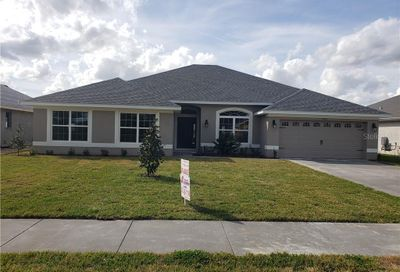 9762 Pepper Tree Place Wildwood FL 34785