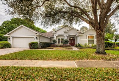 8060 Laurel Ridge Drive Mount Dora FL 32757