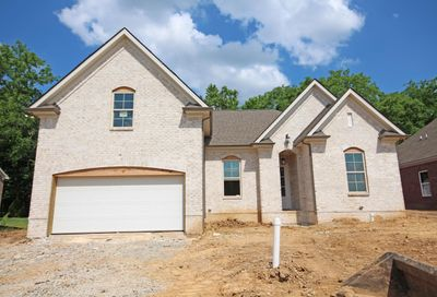 708 Rain Meadow Ct, Lot 252 Spring Hill TN 37174