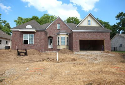 706 Rain Meadow Ct, Lot 251 Spring Hill TN 37174