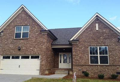 208 Star Pointer Way-Lot 40 Spring Hill TN 37174