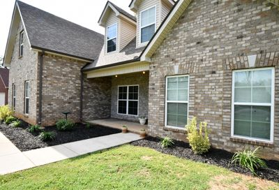 312 Winding Branch Ct Christiana TN 37037