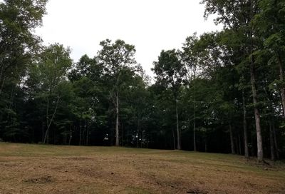 1 Liberty Rd - Lot #1 Fairview TN 37062