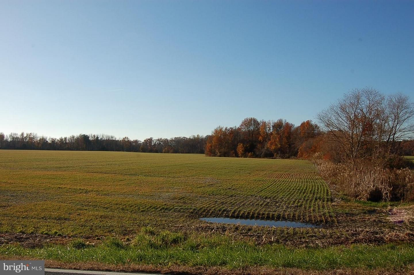 Old Trappe Road