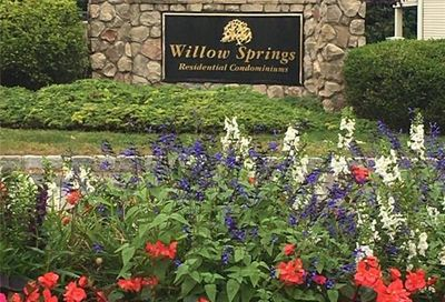 156 Willow Springs 156 New Milford CT 06776