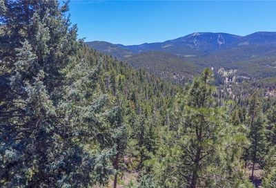 7128-1 Lodgepole Court Evergreen CO 80439