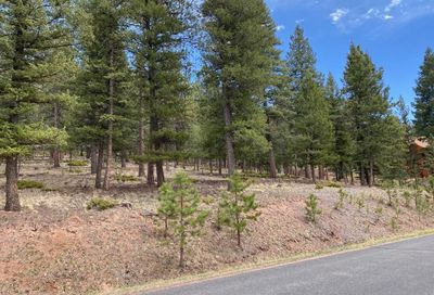 1171 Forest Edge Road Woodland Park CO 80863