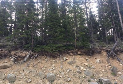 Winterland Lot 31 Idaho Springs CO 80452