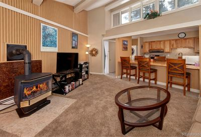 1115 Ski Hill Road Breckenridge CO 80424